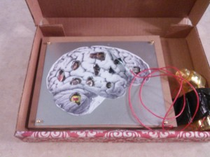 Inside the Brain Box